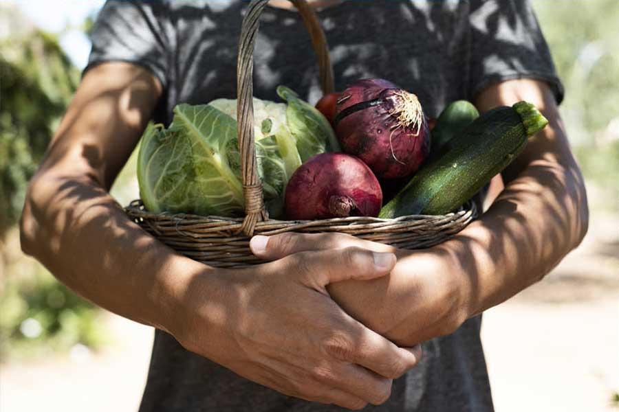 seasonal and local cuisine - Il Barrino di Tatti